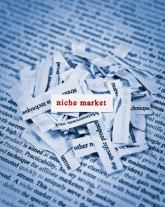 Why You Shouldn't Stick to Your Niche