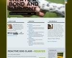 Positively Effective Pet Training and Boarding in Western MA, North CT | Pet Behavior Consulting