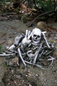 How to Dig Up the Bones of Your Unwritten Novel